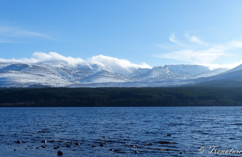 snow capped mountain peaks across Loch Morlich