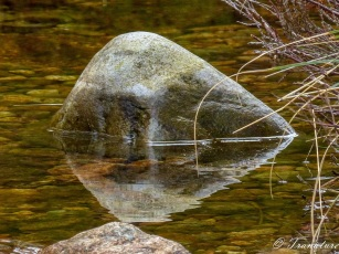 river stone half exposed above water
