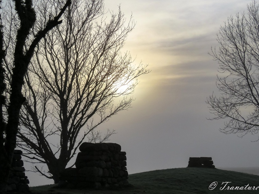 leafless trees, a pile of ancient stones and a stone bench silhouetted in morning mist with a hazy sun