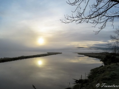 sun breaking through morning mist and low cloud above the river Shin in Sutherland