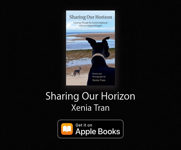 Apple Books banner