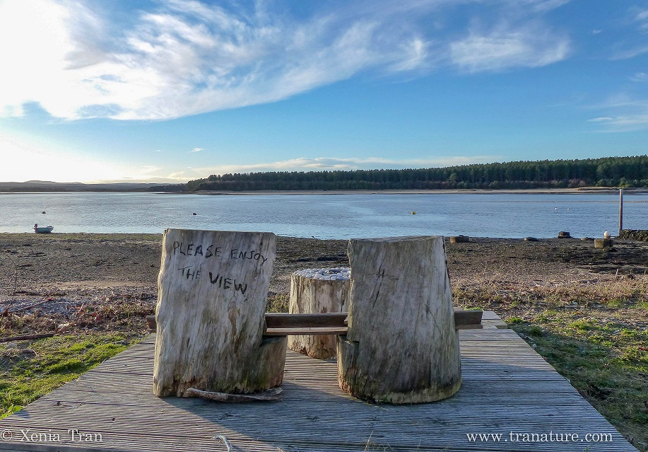a wooden bench made from tree trunks overlooking Findhorn Bay