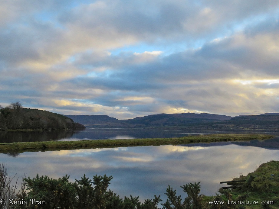 View towards the East along the Dornoch Firth in Winter
