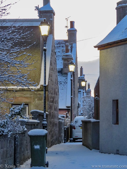 view through a snow covered lane in the Fishertown