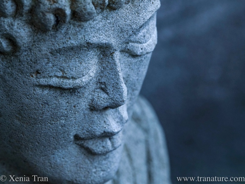 close up shot of the head of a buddha statue