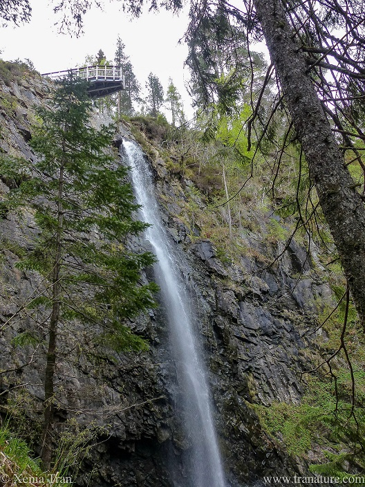 a waterfall with a viewing platform overhanging the cliff and falls