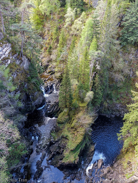 view from the overhanging viewing platform above Plodda Falls