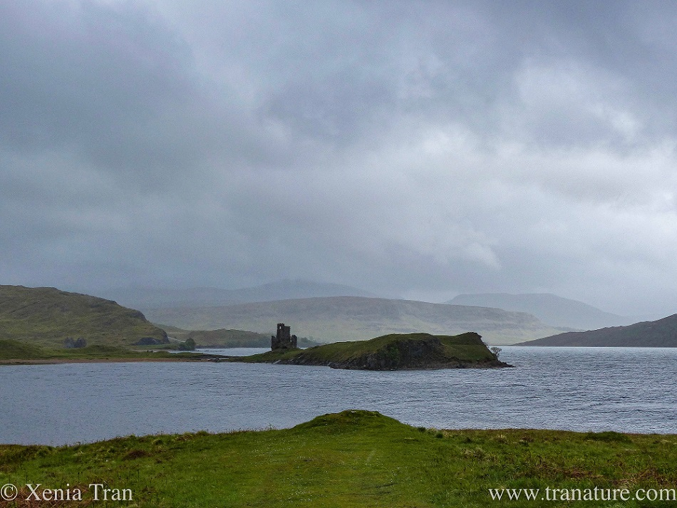 The ruin of the tower of Ardvreck Castle with Spring rain coming down over the hills beyond Loch Assynt