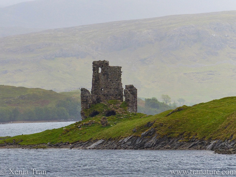 The ruin of the tower of Ardvreck Castle in the Spring rain with the hills in the background