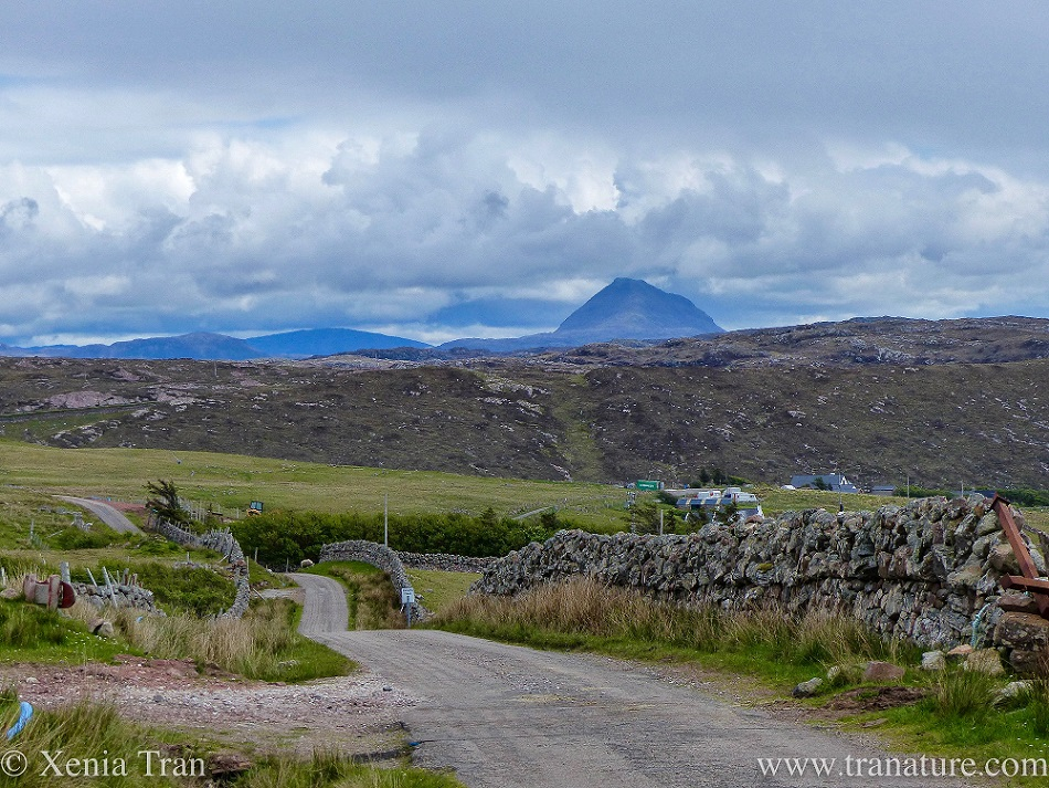 an undulating single track road in Assynt with a dry stone wall and mountain views beyond