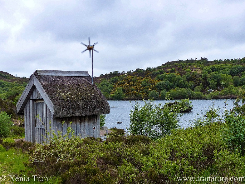 a solar and wind powered wooden toilet building with a grass roof beside a loch