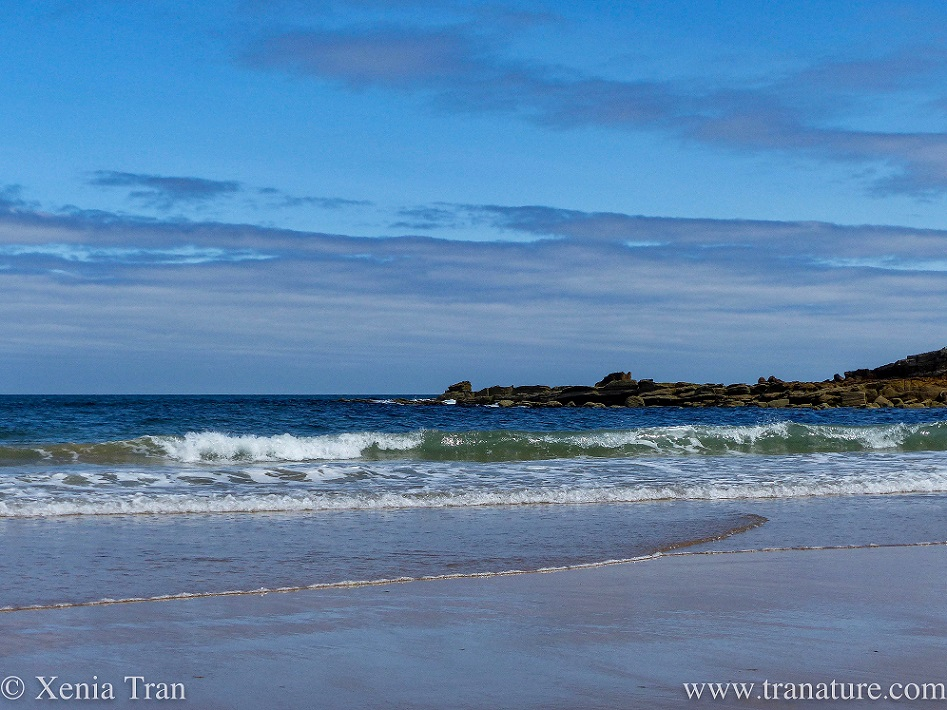 a gentle surf breaking along the shore with rocks and outcrops in the distance