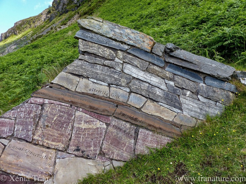 Top half of the Puzzle Wall at Knockan Crag, Sutherland