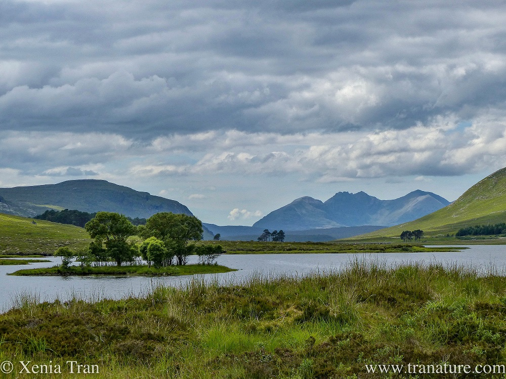 Silent Sunday: LochDroma