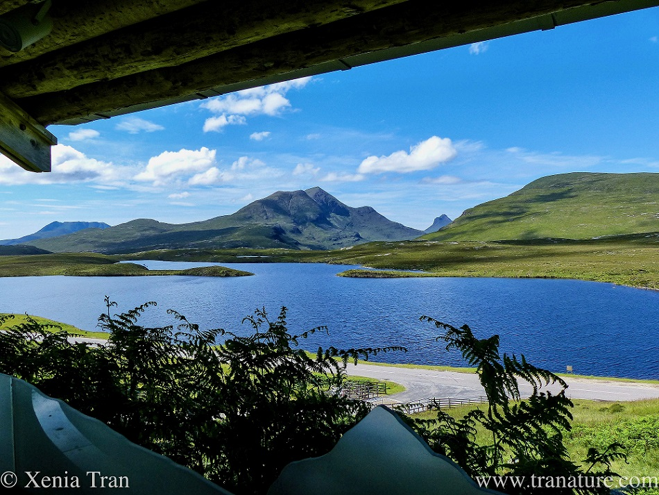 view to the west through the open Rock Room window at Knockan Crag Nature Reserve