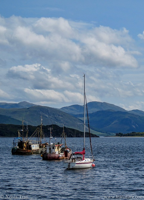 a small yacht anchored behind two old fishing boats in Loch Broom
