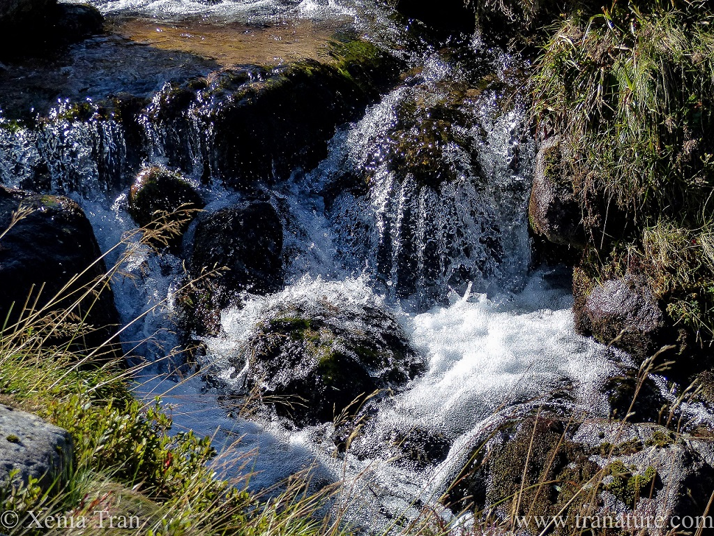 multiple waterfalls in a fast flowing mountain stream