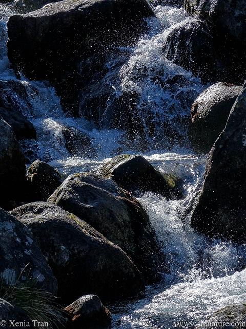 close up shot of water tumbling down between stones