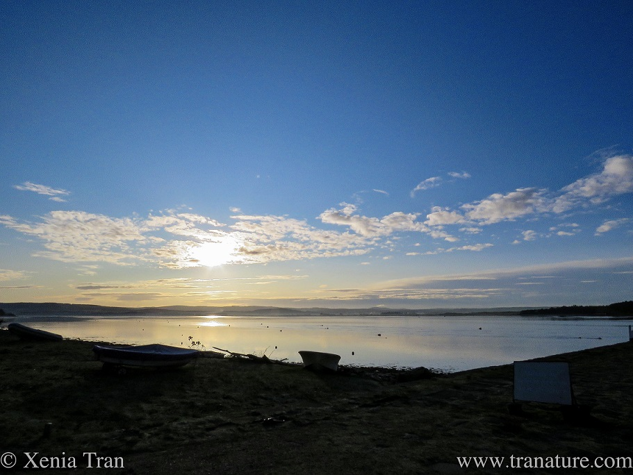 sunrise over Findhorn Bay, a few rowing boats in the foreground