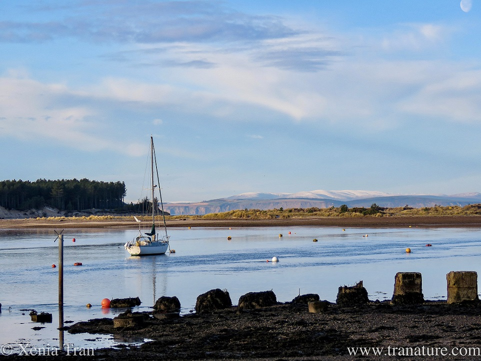 a sailing boat anchored in Findhorn Bay