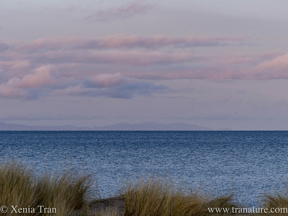 twilight over the Moray Firth with sky and clouds turning pink