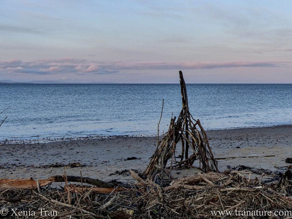 a driftwood wigwam on the beach at twilight