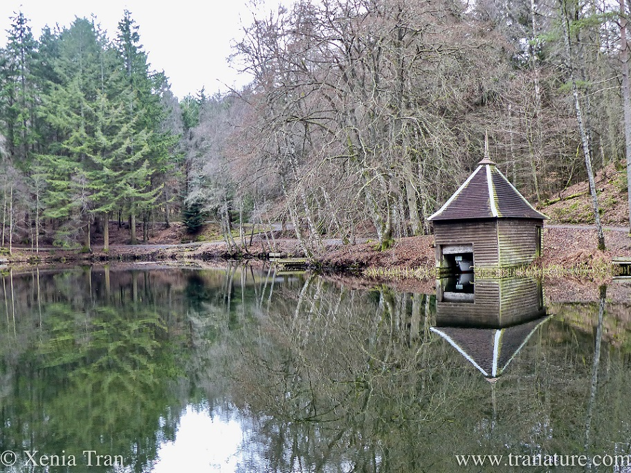 a wooden boathouse on Loch Dunmore in Winter