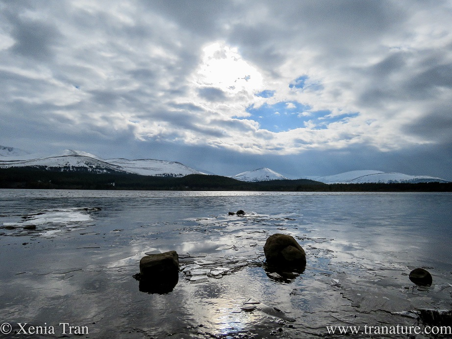 Loch Morlich part-covered in ice, reflecting the clouds and blue sky