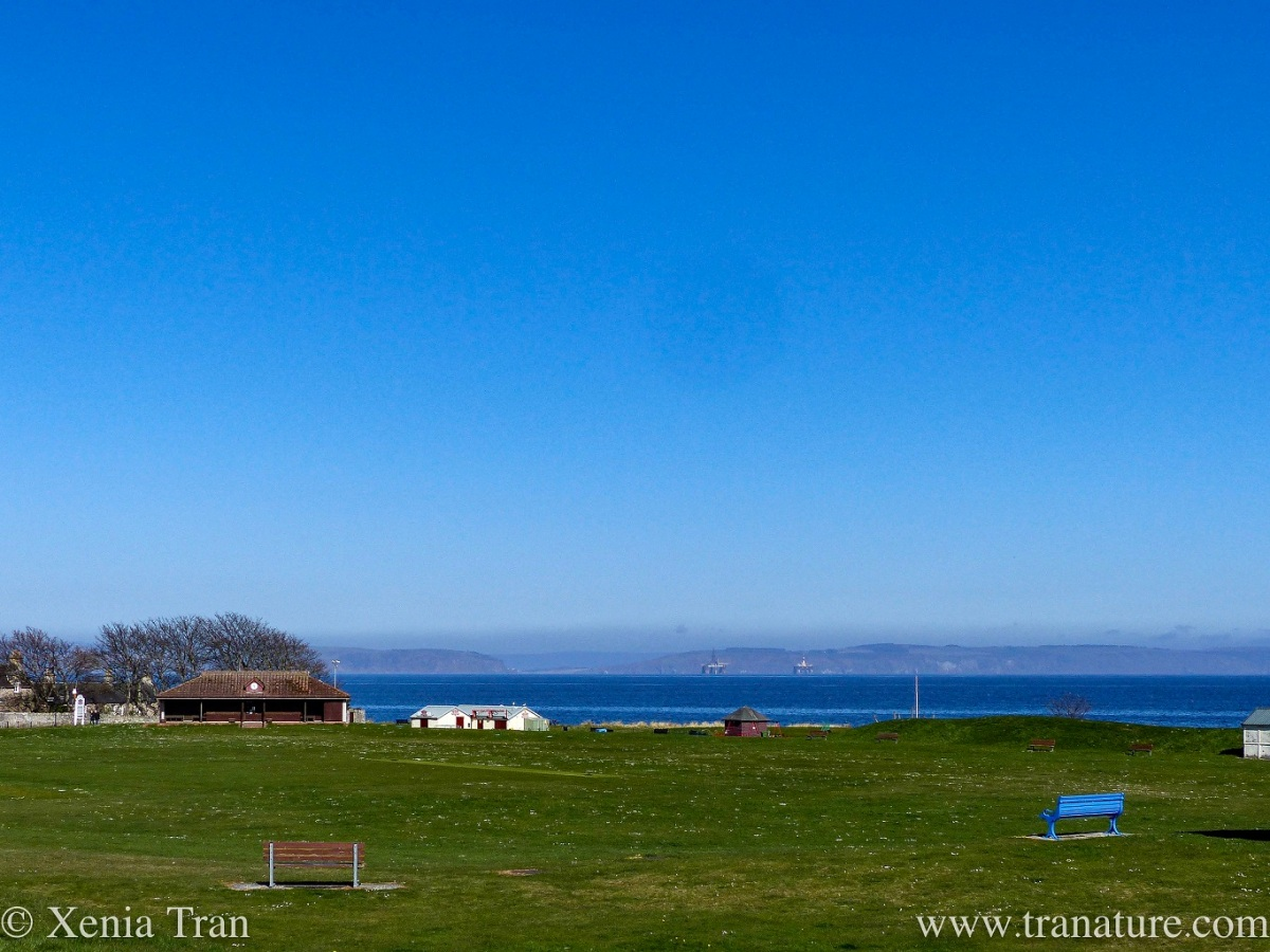 a locked up cricket pavilion and cafe by the Moray Firth