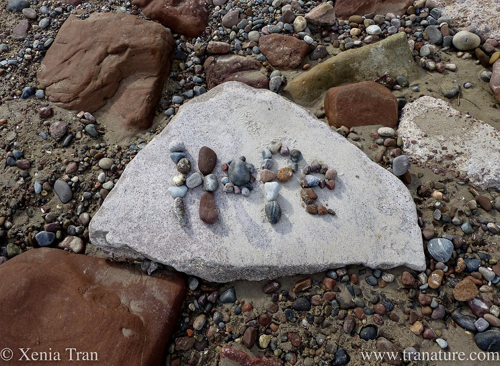 the word Hope written in pebbles on a larger stone