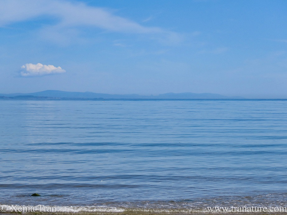 a calm blue sea under a blue sky with blue mountains