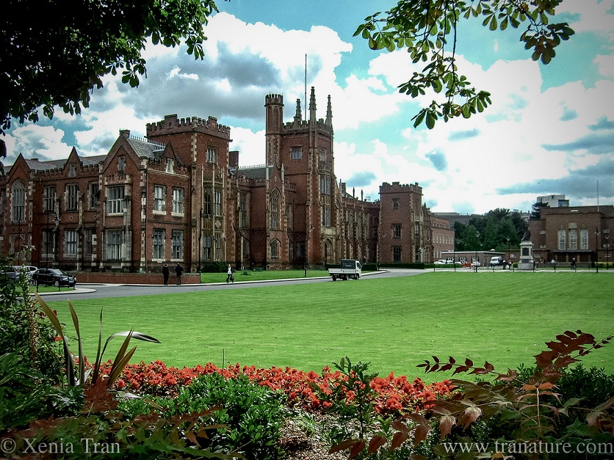 Queen's University Belfast with Summer flowers