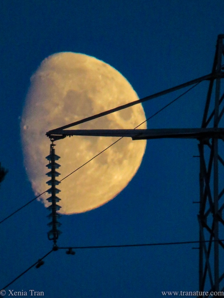 zoomed image of Harvest Moon behind side of a pylon