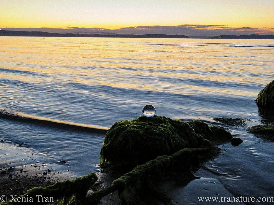a lensball on a rock in the water at sunset