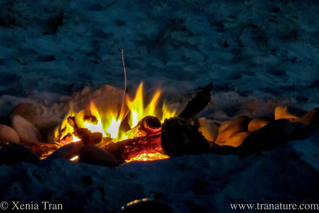 close up of a small firepit on the beach
