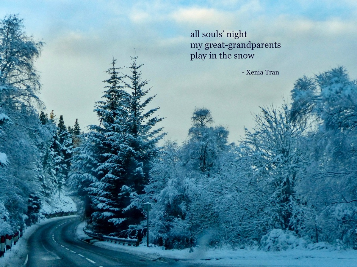 haiku poem by Xenia Tran with an image of snow-covered trees lining a winding road