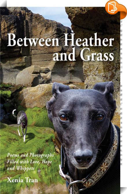 Between Heather and Grass by Xenia Tran Look Inside