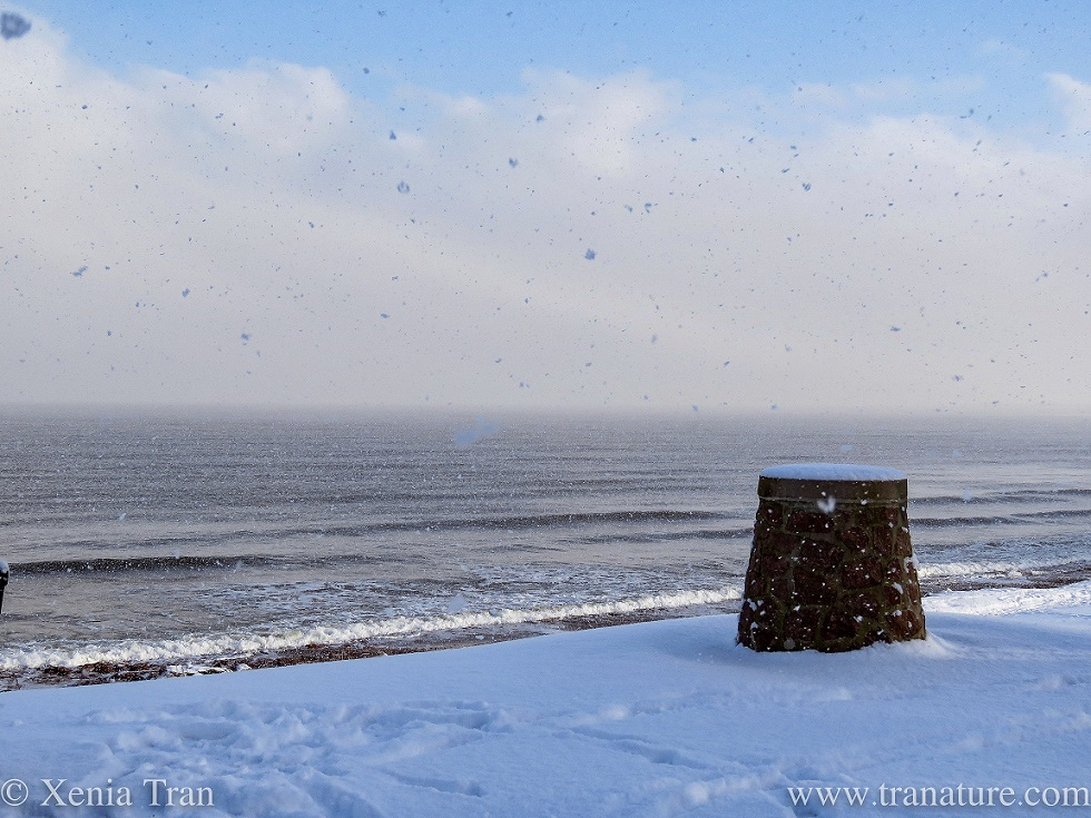 a cairn on a snow-covered hill overlooking the Moray Firth