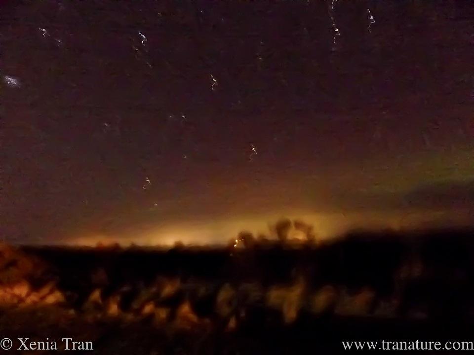 a faint green aurora over the hills under a star-lit sky
