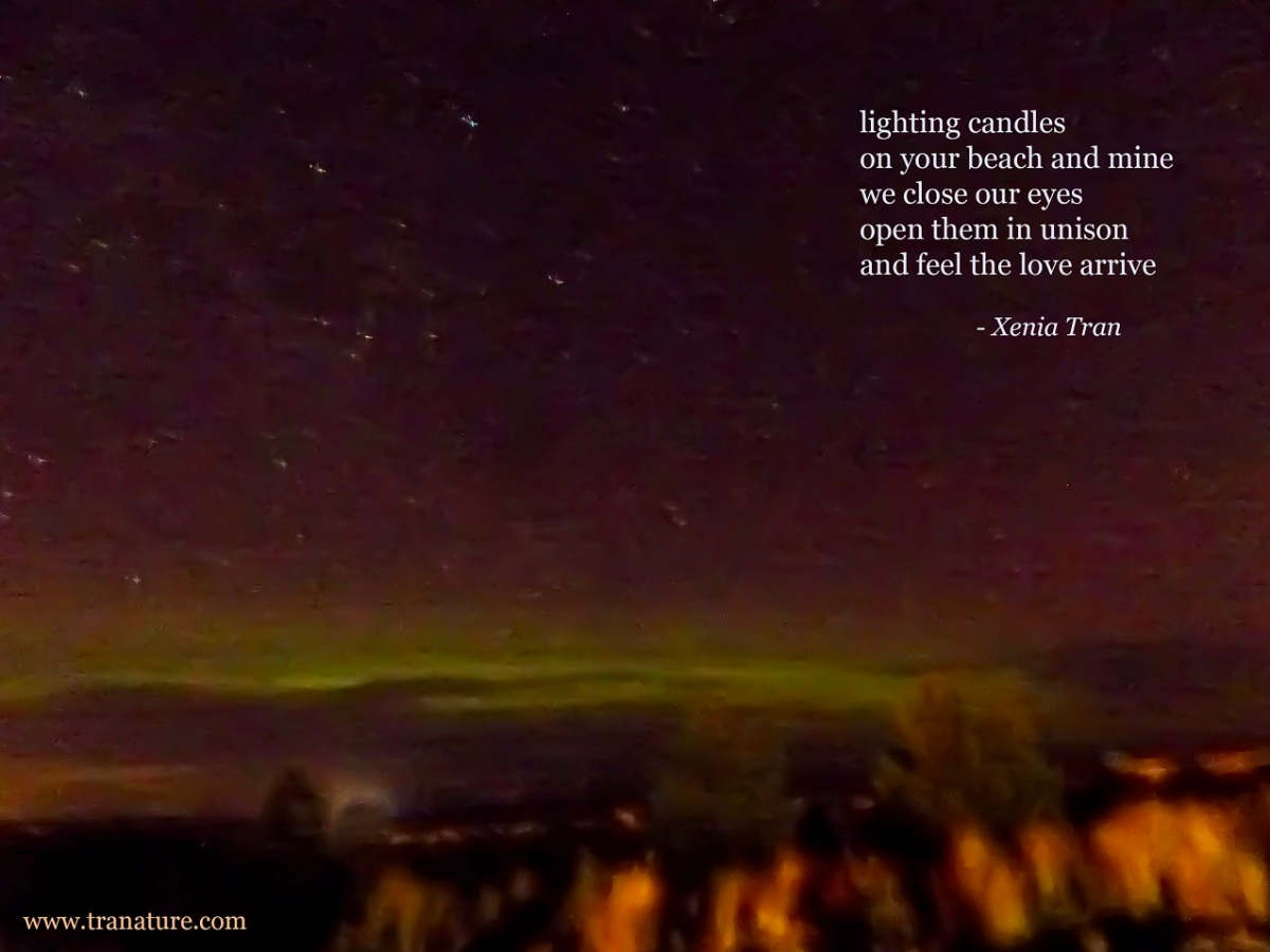 tanka poem by Xenia Tran with light green aurora over the Moray Firth