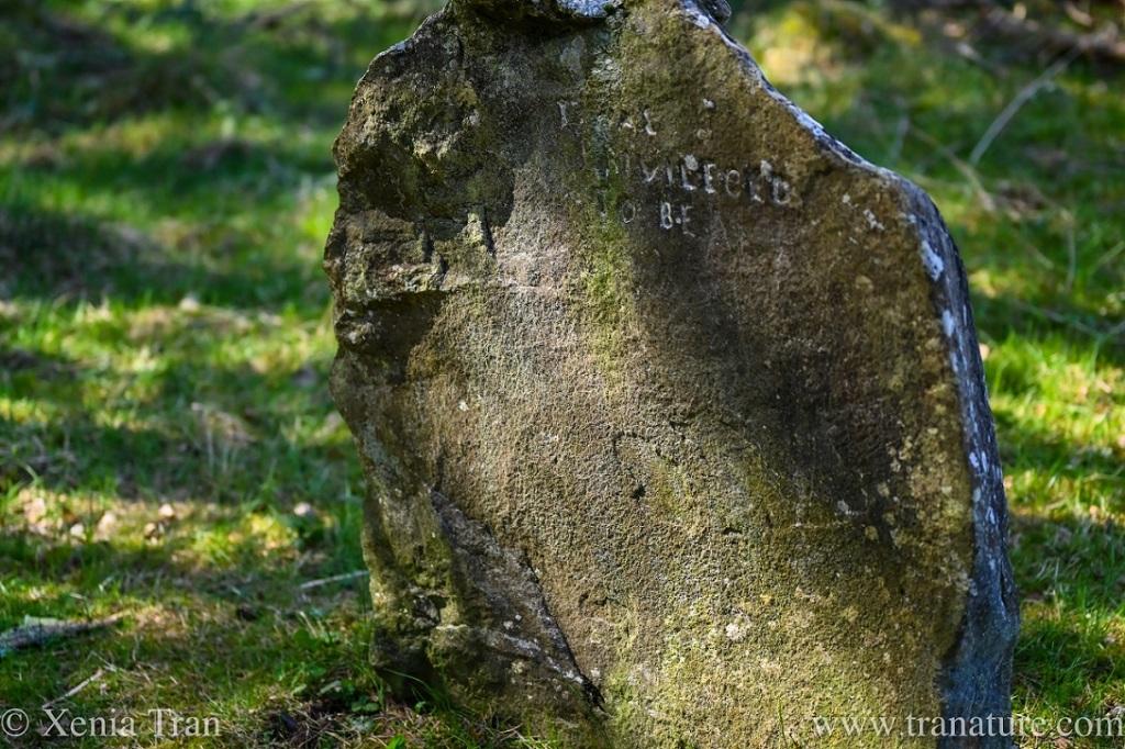 gravestone in Frank Bruce sculpture park