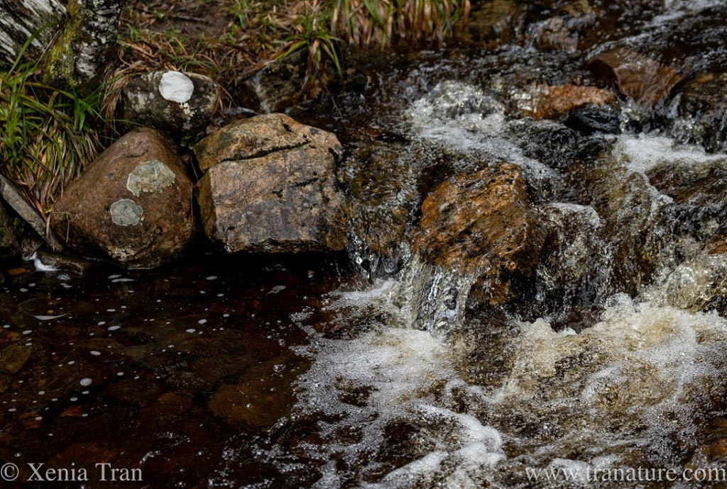 a small waterfall in a mountain stream