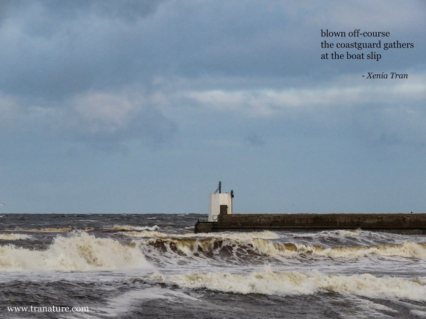 a haiku by Xenia Tran in honour of the RNLI with an image of a wild sea and lighthouse