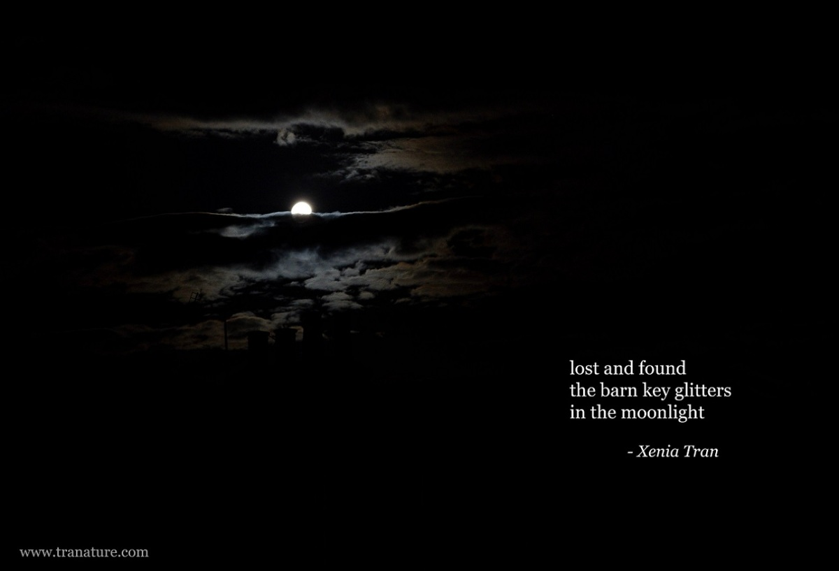 haiga with a haiku by Xenia Tran and an image of a waxing gibbous part-obscured by cloud